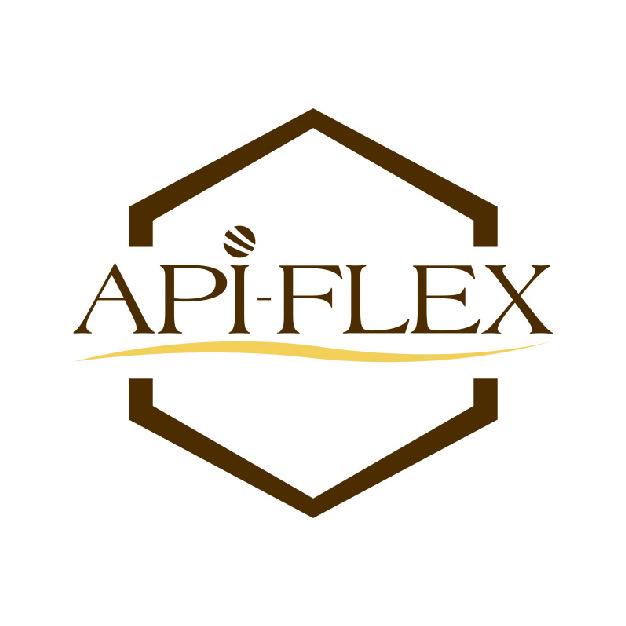 Logo - Api-Flex